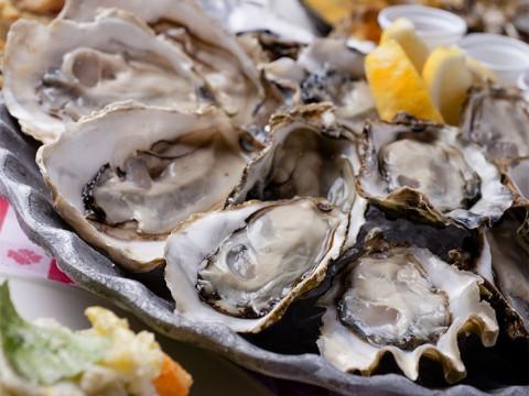 牡蠣の食べ放題開催決定! NYから上陸した100年の歴史ある『グランドセントラルオイスターバー』