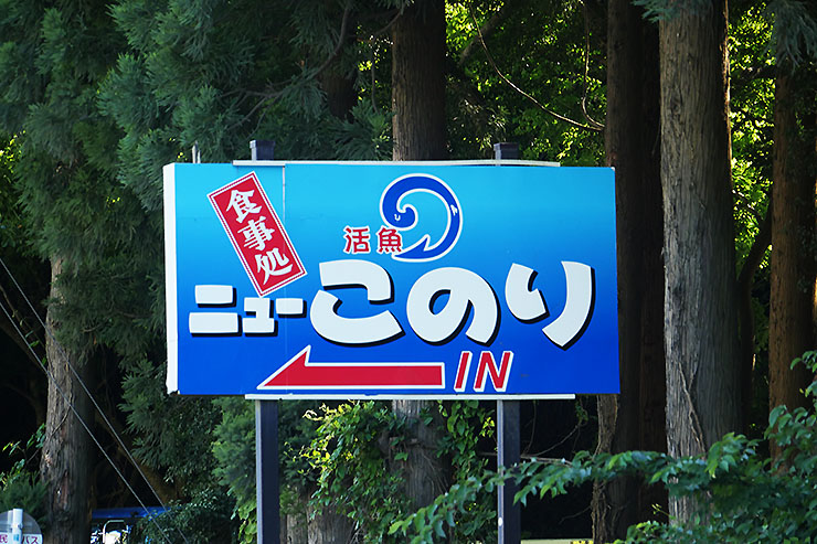 kodokunogurume-onagawa-konori26