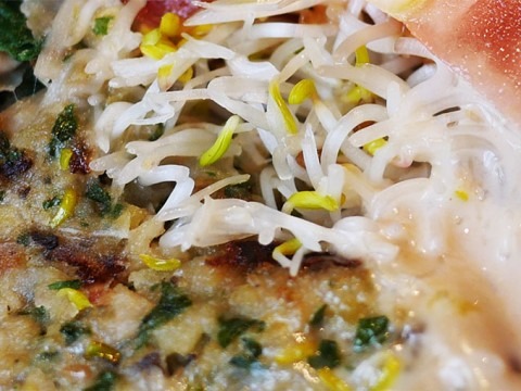 美味しいか美味しくないか / ハッキリと感想が二分する究極オーガニック料理「シュルーム」