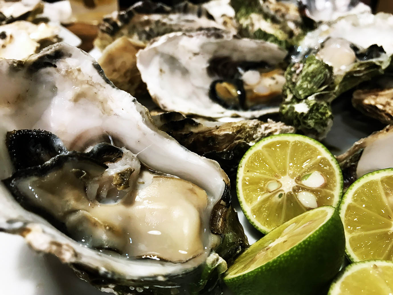 oyster-mart-higashi-nakano5