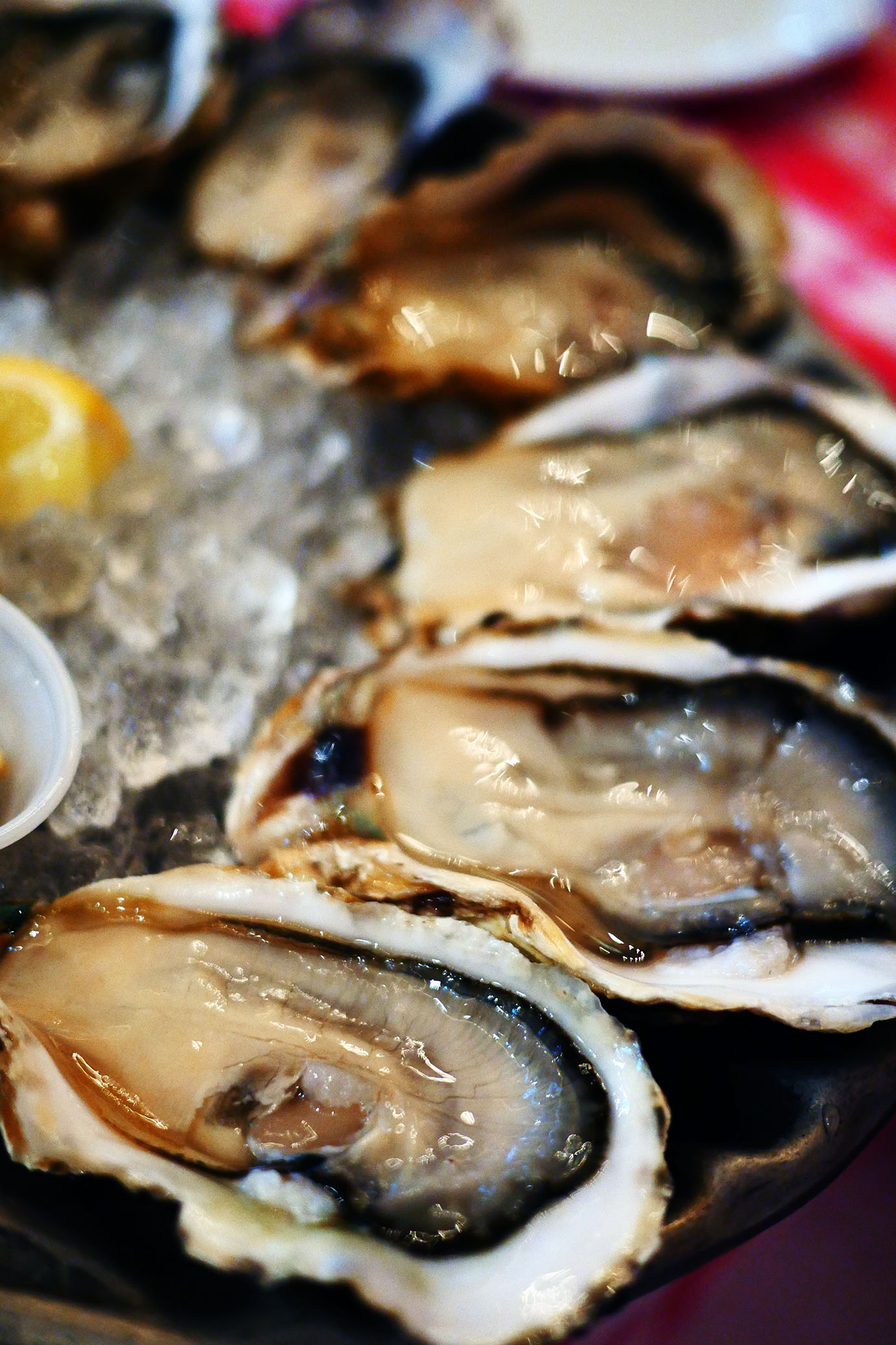 grand-central-oyster-bar2
