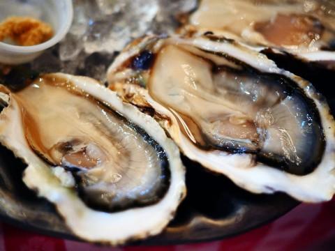 【極上牡蠣】ニューヨークから上陸したオイスターレストランで九十九島産の牡蠣を堪能する / グランドセントラルオイスター