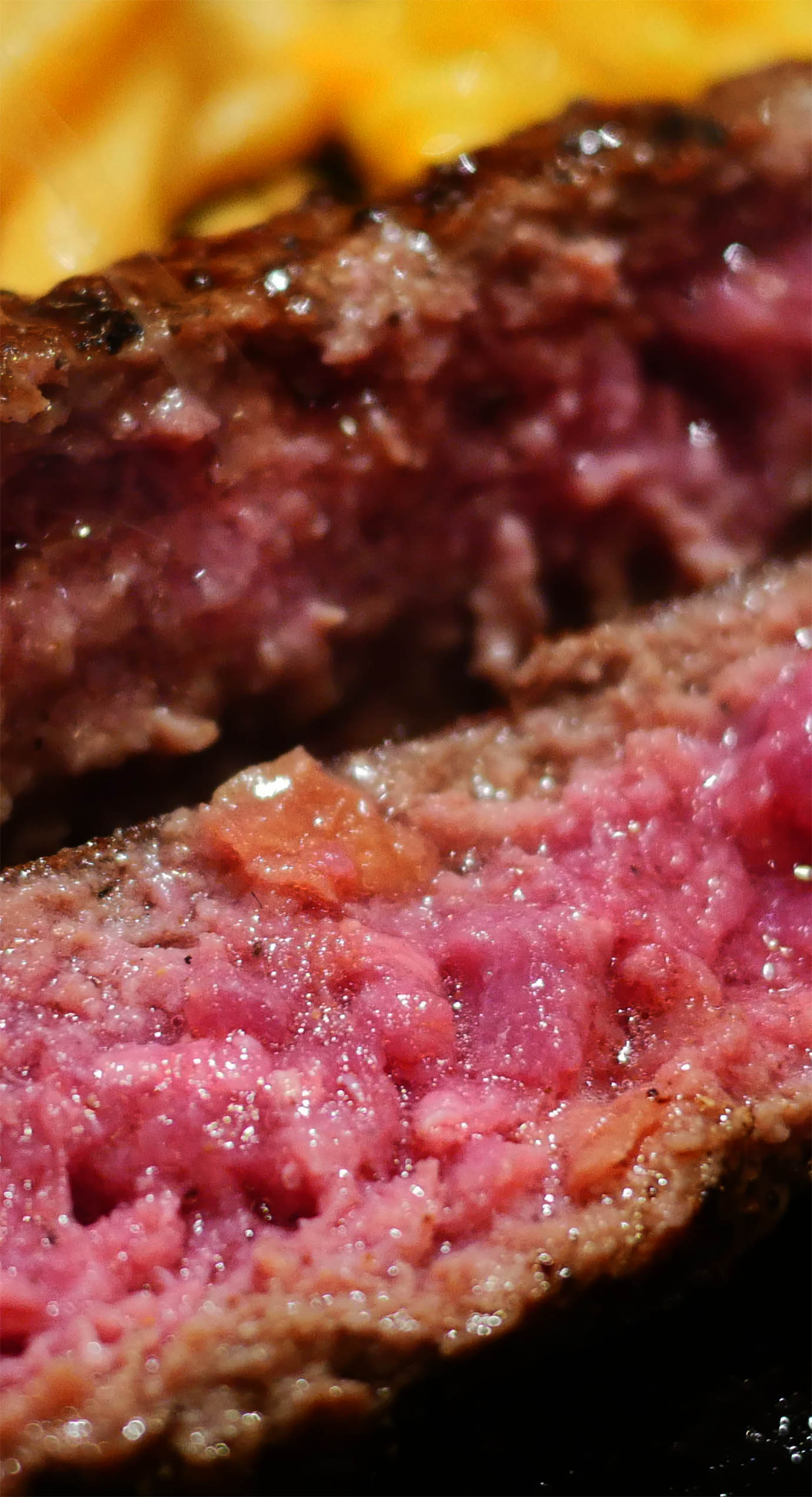 salt-and-hamburger-steak7