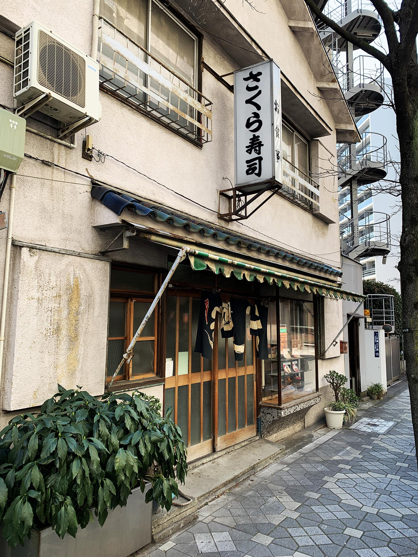 katsudon-sakurasushi9
