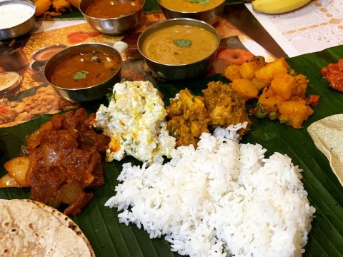 curry-india3