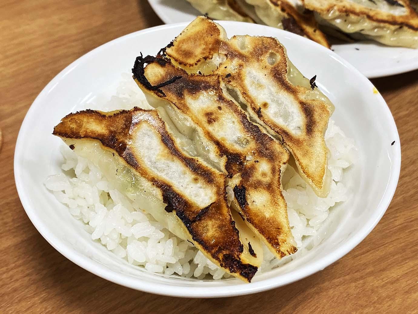 gyoza-daigaku6