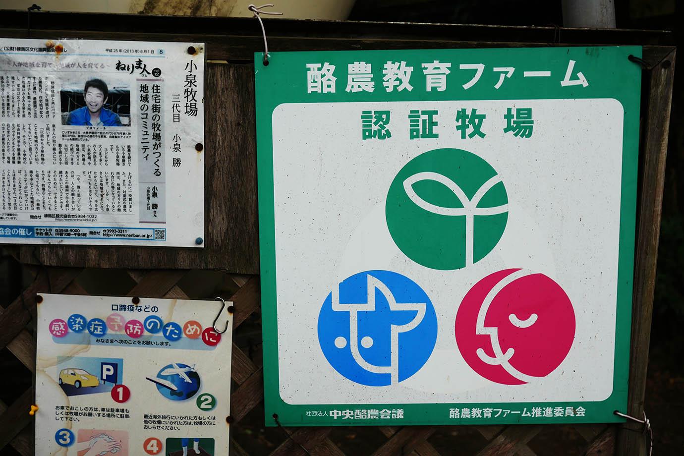 tokyo-koizumibokujyo13