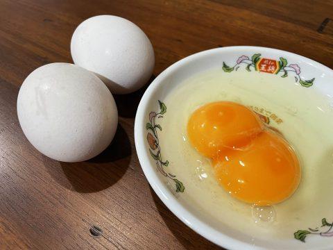 【異世界グルメ】黄身が2つ入っている生卵が不思議でウマイ件 / 知多半島農場直送の二黄卵・幸せを呼ぶ卵「200個に1個の珍しさ」